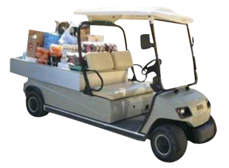 CLUB AZH8 CAR FOR CARGO AND GARBAGE