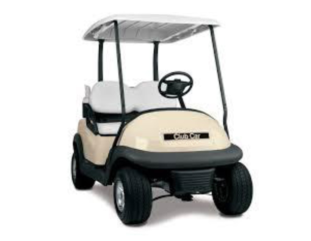 Rental Golf Carts in Florida 2-Passenger