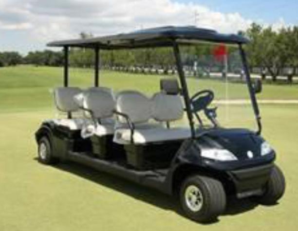 Rental Golf Carts in Florida 6-Passenger