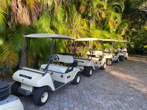 2005 Club Car DS GAS 2 seater wholesale