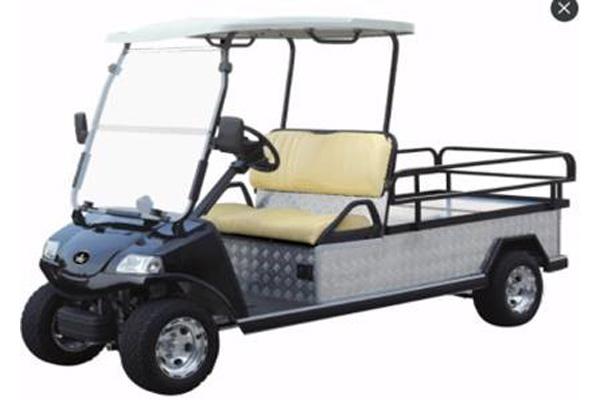 2019 NEW TURFMAN 500 Golf Cart