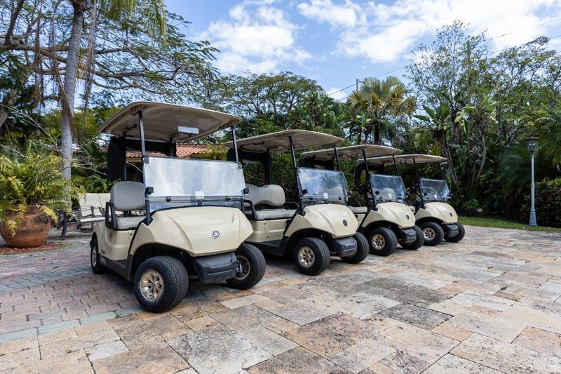 Andres Sands Eleuthera, Bahamas VIP golf cart customer
