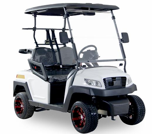 Club 2 Passenger Golf Cart SKU #N325