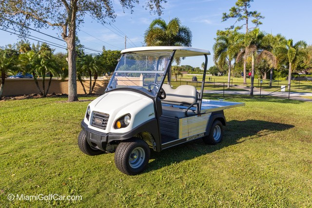 Carryall 500 with Flat Bed Electric or Gas SKU U272 front view