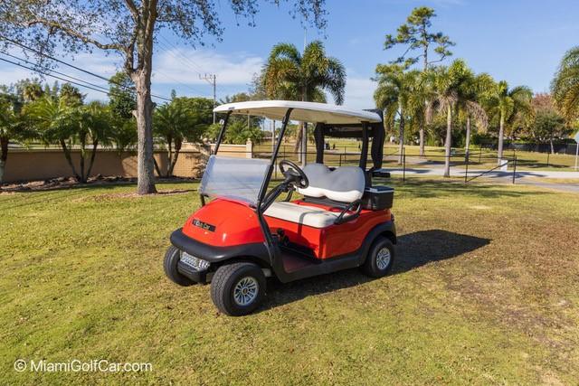 VIP Golf cart customer in Florida Keys