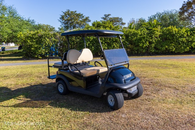 Stevette Higgs Harbor Island Bahamas golf car customer